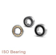ISO 16013 deep groove ball bearings